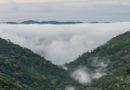 La ANLA gestionó $500.000 millones para la conservación de la biodiversidad y el recurso hídrico
