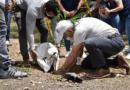 Con siembra de árboles, cucuteños celebraron el Día Mundial del Medio Ambiente